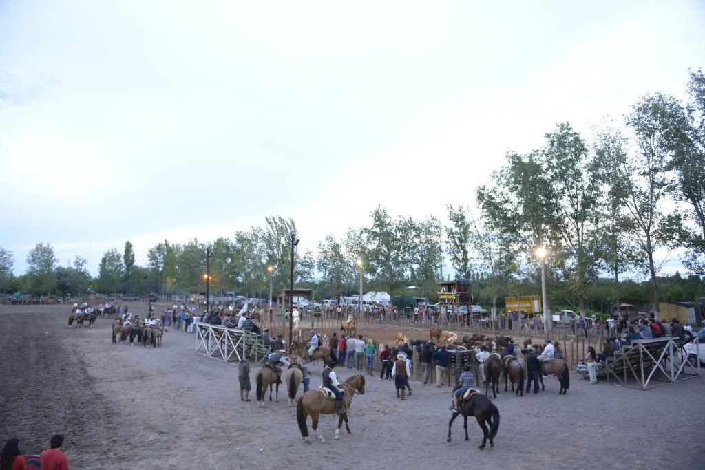 El campo y sus costumbres se hicieron presentes en Junín