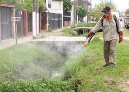 Comenzarán las tareas de fumigación en San Martín