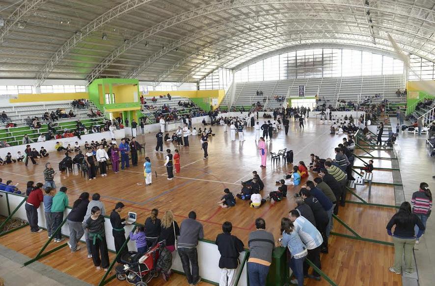 Torneo Abierto de Artes Marciales Copa Día del Amigo 2014