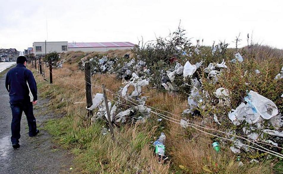 Contaminación con bolsas plásticas