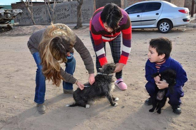 ProTenecia de mascotas