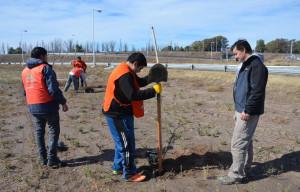 La Paz celebró el Día del Árbol realizando tareas de Forestación y Reforestación