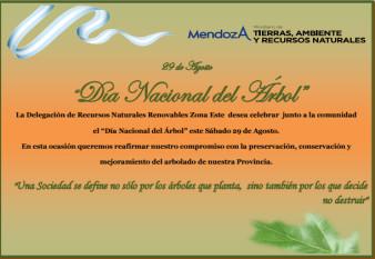 29 de Agosto: Día Nacional del Árbol