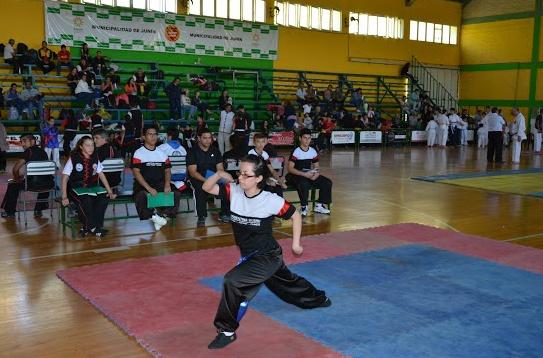 un Torneo Apertura de Kung Fu