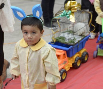 Los animales tuvieron su festejo en Junín