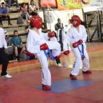 El 3° Torneo Provincial de Taekwondo  se disputó en Rivadavia